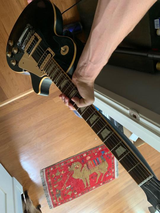Click image for larger version.  Name:guitar1.jpg Views:18 Size:54.3 KB ID:103001